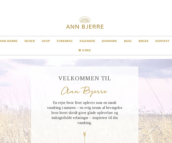 Ann Bjerre